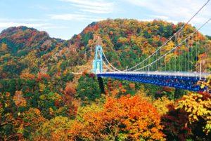 紅葉の時期の竜神大吊橋