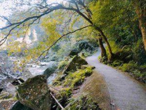 雄川の滝への遊歩道2