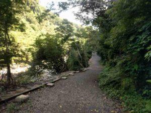 雄川の滝への遊歩道1