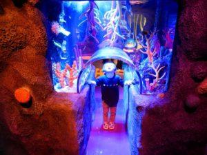 シーライフ名古屋のカラフルなサンゴ礁のトンネル