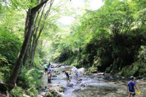 檜原村 川遊び