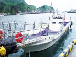 妻良港から谷川浜への渡し船