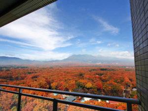 ホテルエピナール那須 部屋からの紅葉の眺め