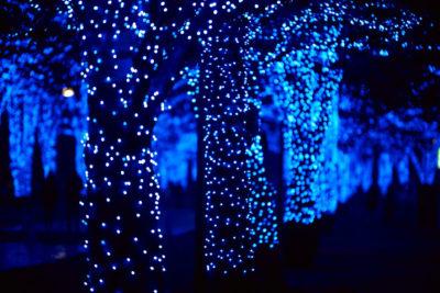 渋谷公園通りイルミネーション「青の洞窟」1