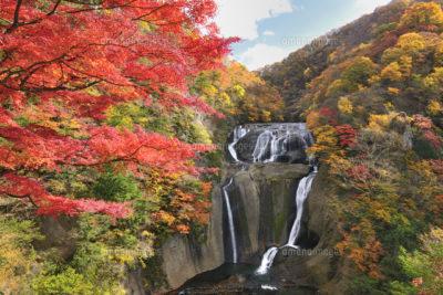 袋田の滝 秋