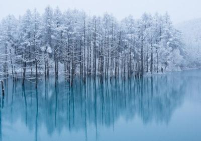 美瑛「青い池」 冬