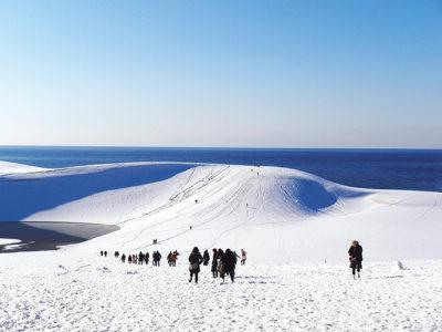 鳥取砂丘 雪景色1