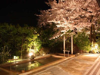 雄山荘 夜桜ライトアップ