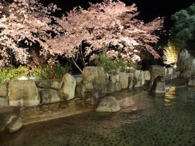 望川館(ぼうせんかん)花見露天風呂2
