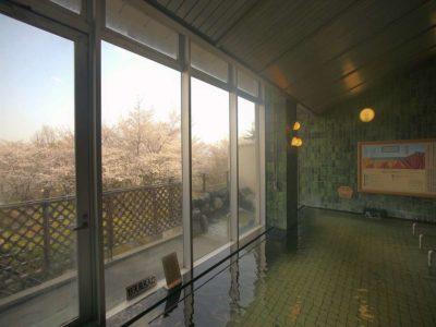 ホテル神の湯温泉 内風呂からの桜