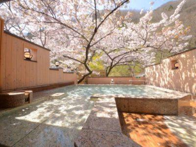 よもぎ埜 森と桜の湯